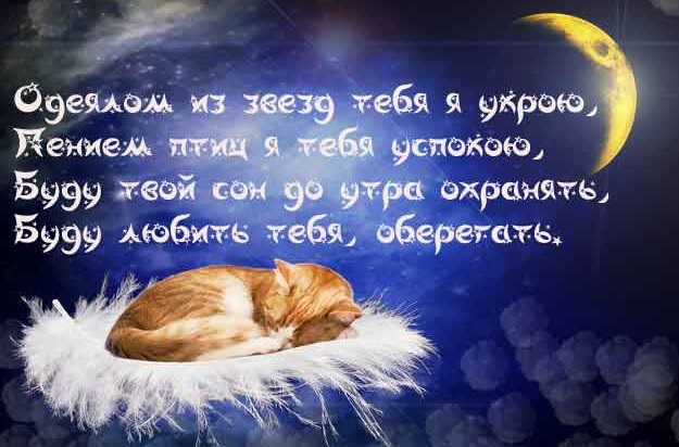пожелание сладких снов знакомой девушке