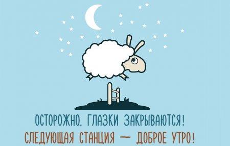 Прикольные пожелания доброй ночи