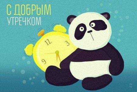 Изображение - Поздравление с добрым утром девушке 1534968166_pozhelaniya-s-dobrym-utrom-lyubimoy-devushke